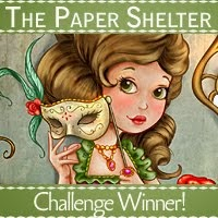 I WON at the Paper Shelter