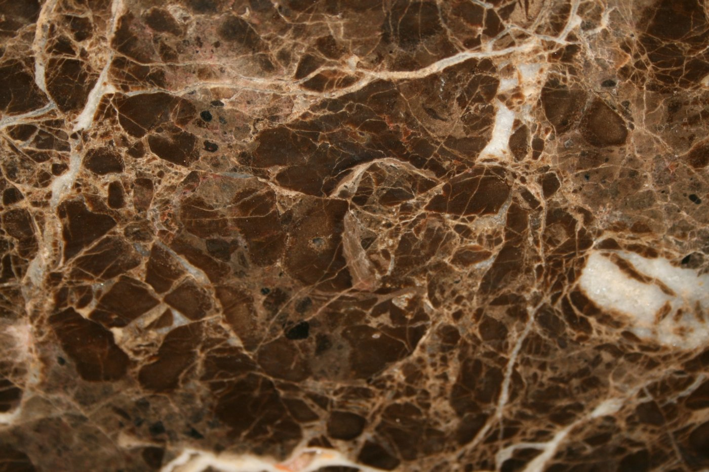 Slab Sunday Emperador Dark Marble