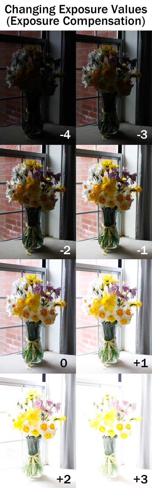 Changing Exposure Values using Exposure Compensation   Boost Your Photography
