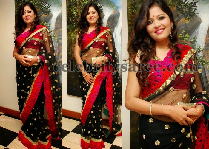 Black Transparent Saree with Sequins
