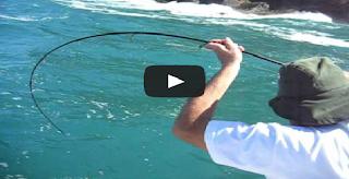 FISHING ON THE ISLAND