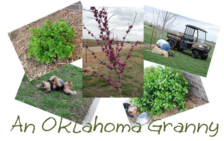 An Oklahoma Granny