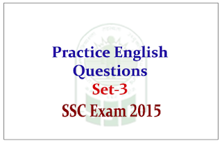 Practice English Questions and Answer for SSC CGL Mains