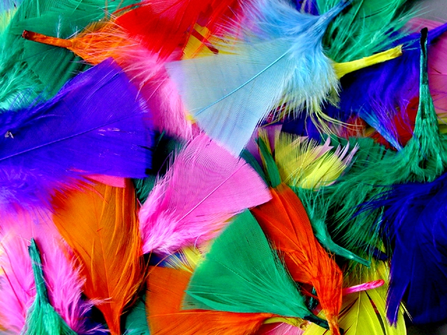 Bag Of Feathers1