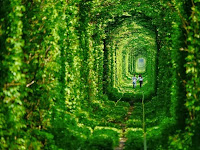 Dünyanın Terk Edilmiş En Güzel Yerleri