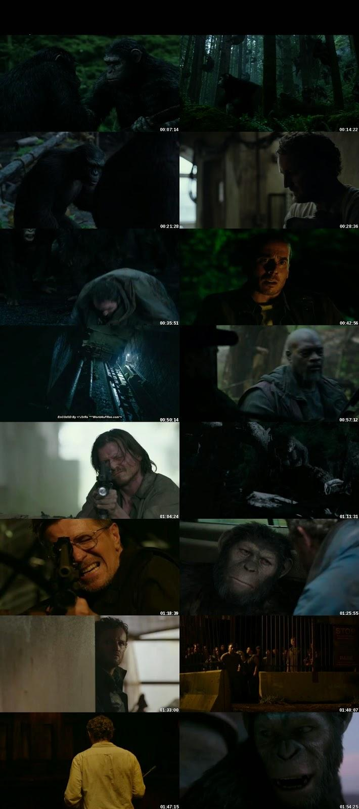 Screen Shot Of Dawn of the Planet of the Apes 2014 300MB Full Movie Hindi Dubbed Free Download 480P BRRip Small Size PC Movie