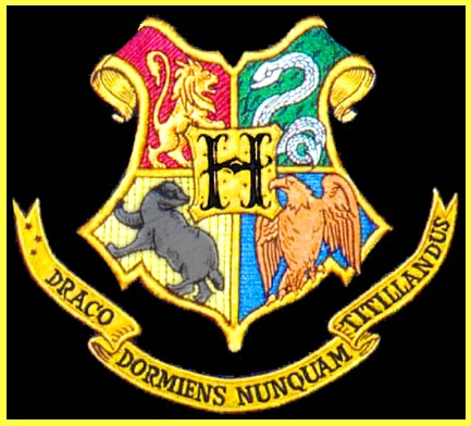 Image result for hogwarts flags