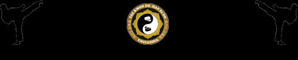 taekwondo-hapkido