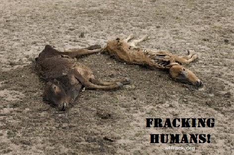 Cows Dead From Fracking B Frack Fluid Kills Cows B Fracking Liquid B Wtfrack Org B Cornell Study in addition Overlay Fracturing Notxt moreover Construction Transport Actvity V likewise Datavan Nav besides Vengoshshale. on chemicals in fracking fluid