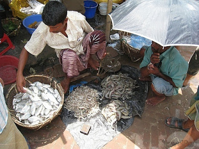 Fish  in Cox's Bazar Sea Beach