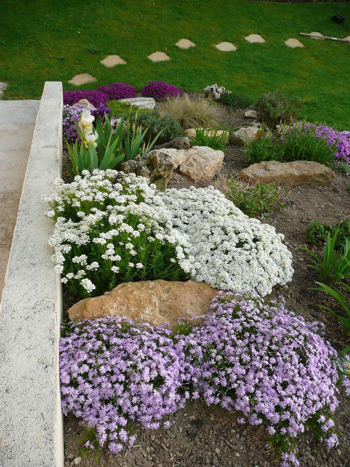 Notre jardin secret la rocaille aux couleurs du printemps for Jardin secret 78