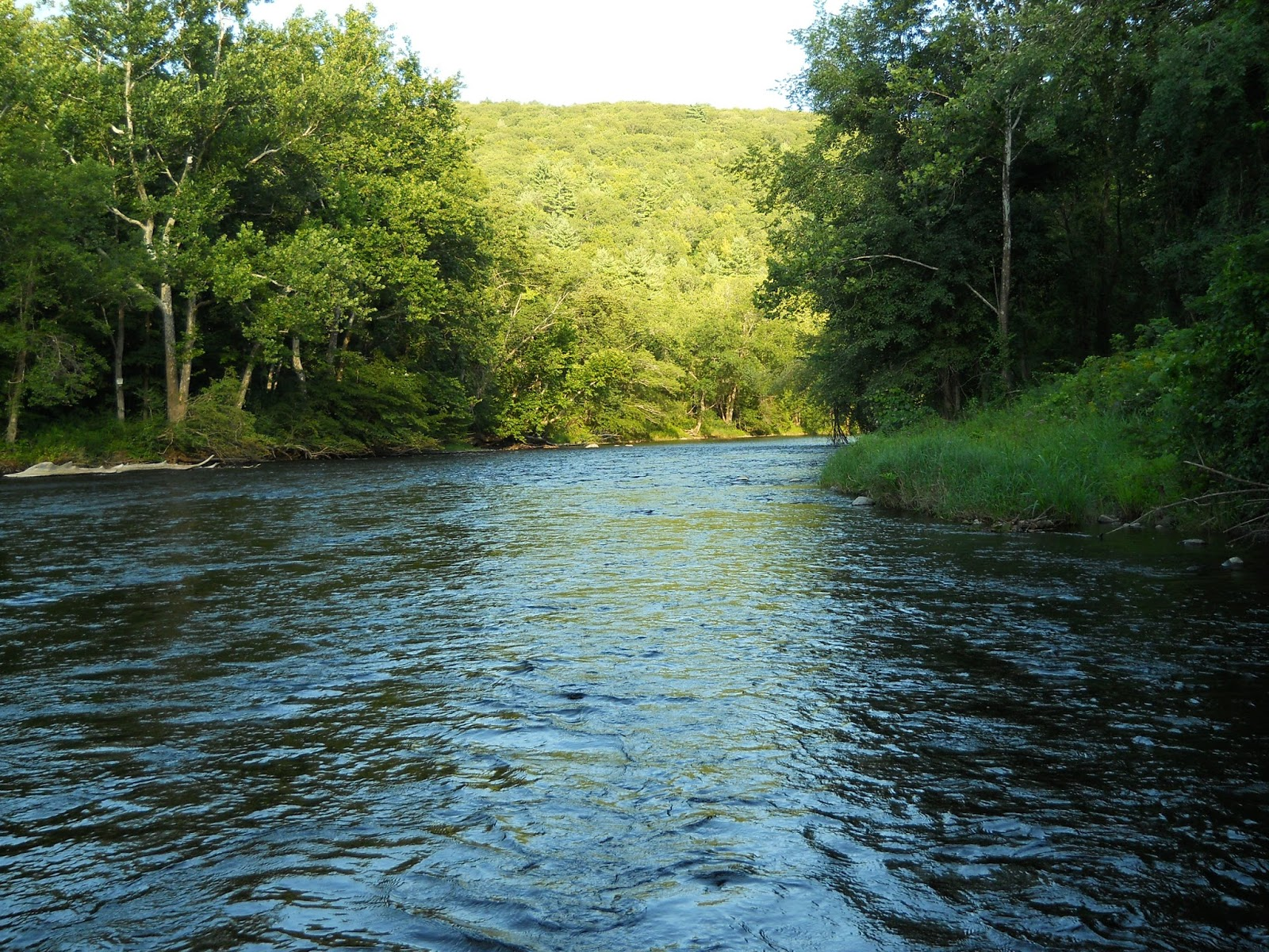 The farmington river fishing reports maine fly fish for Farmington river fishing report