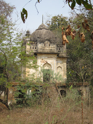 Lucknow outskirts overgrown building