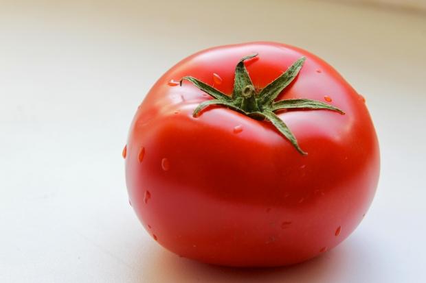 manfaat tomat untuk wajah dan muka