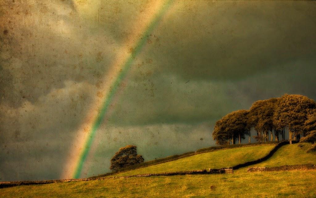 Rainbow by Baldur McQueen