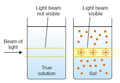 OPTICAL PROPERTIES OF SOLS - Tyndall effect (Illustration).