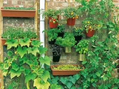 Decoraci n de jardines peque os ideas para decorar - Decoracion jardin pequeno ...