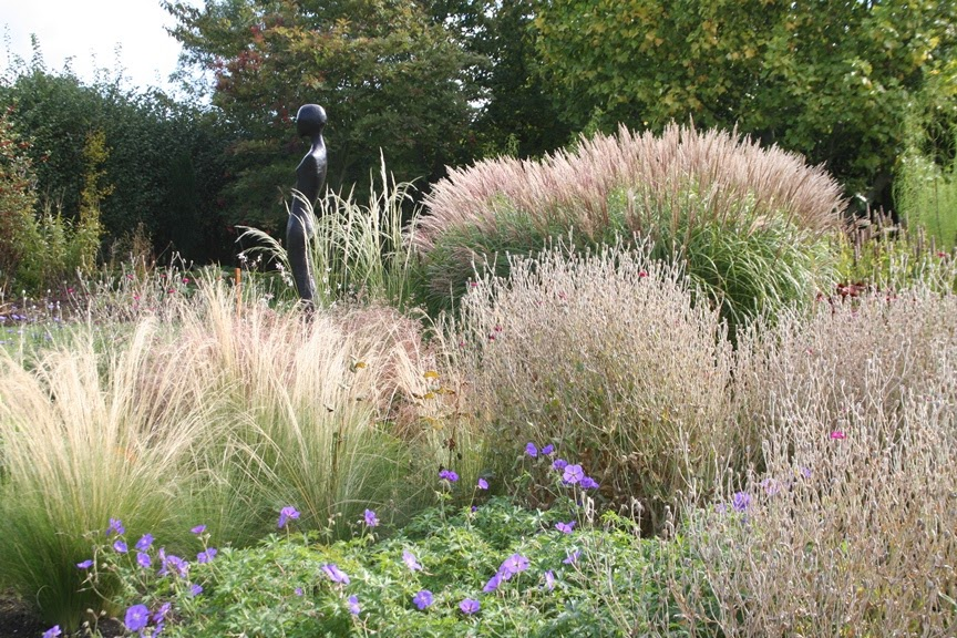 Bluebell Cottage Gardens And Nursery Soft Soporific