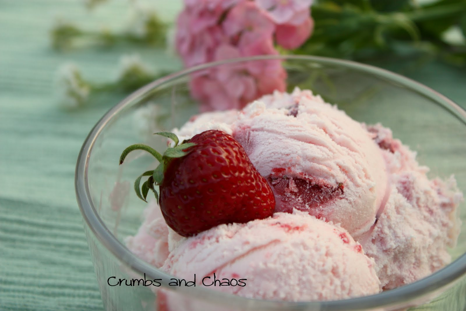 Fresh Strawberry Ice Cream - Crumbs and Chaos