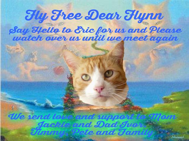 Flynn Forever