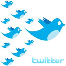 Cara Menambah dan Memperbanyak Twitter Followers