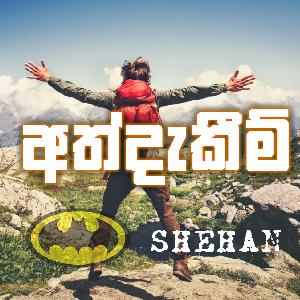 Experience of Ravindu Shehan