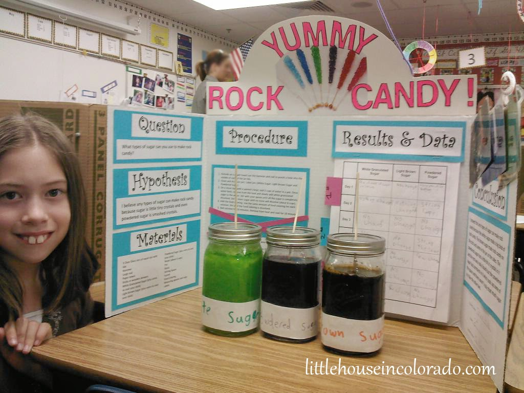 easy 6th grade science projects
