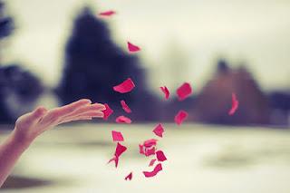 A Boa Música é de Rosas...