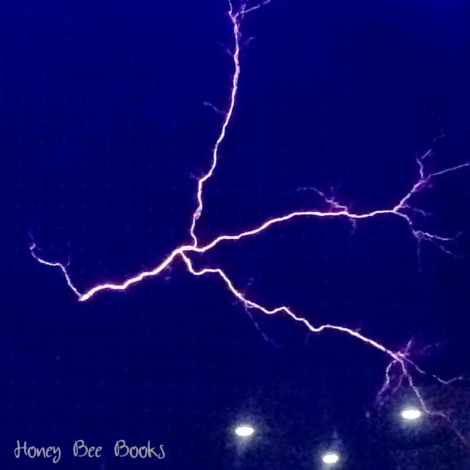 Lightning strike in the Awesome Earth Gallery, Questacon #humanbrochure
