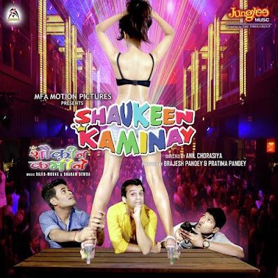 Poster Of Hindi Movie Shaukeen Kaminay 2016 Full HD Movie Free Download 720P Watch Online