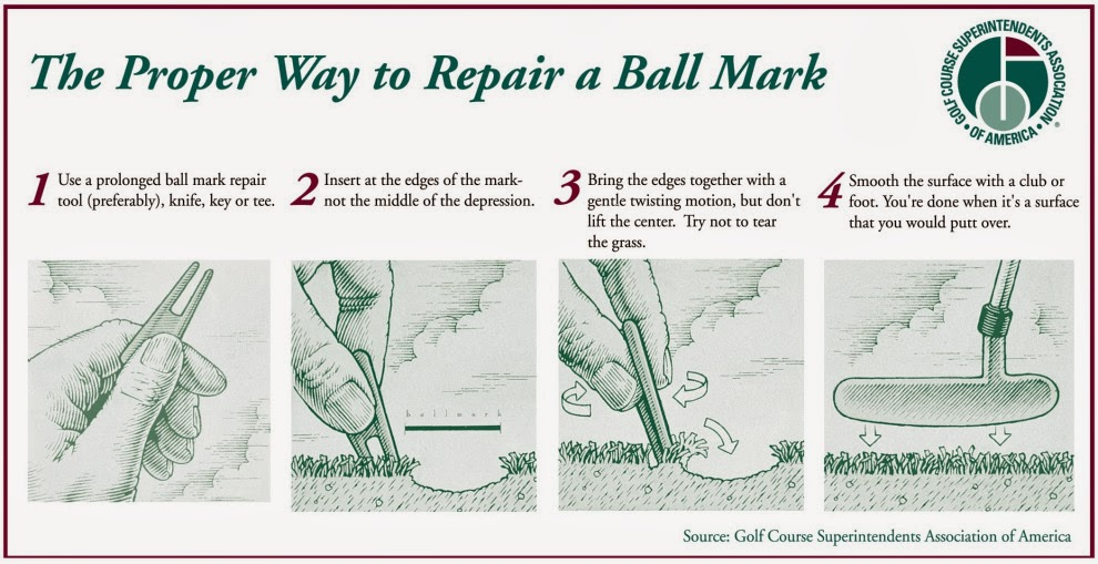 Ball Mark Repair