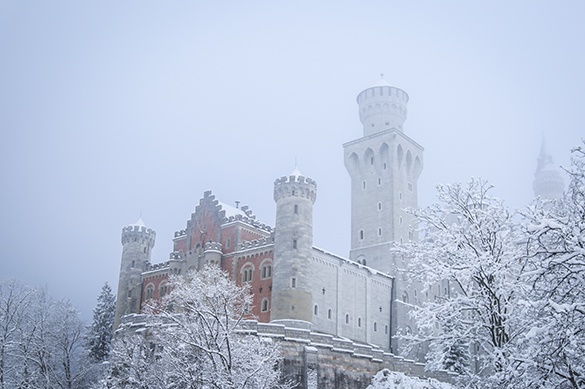 neuschwanstein castle in fog