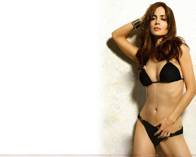 Eliza Dushku Bikini Hot Wallpaper