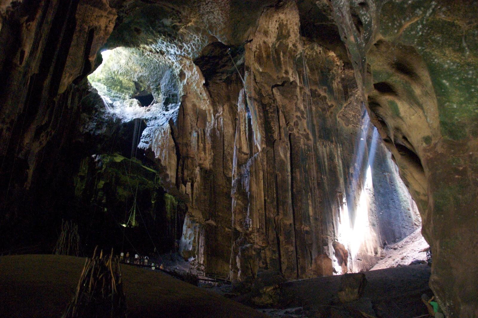 Cuevas Gomantong, viajes y turismo