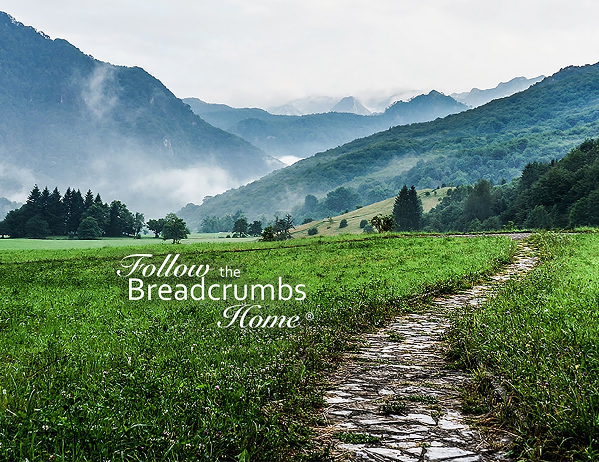Follow the Breadcrumbs Home®