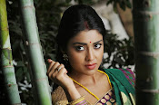 Shriya Saran latest Photos in saree-thumbnail-13