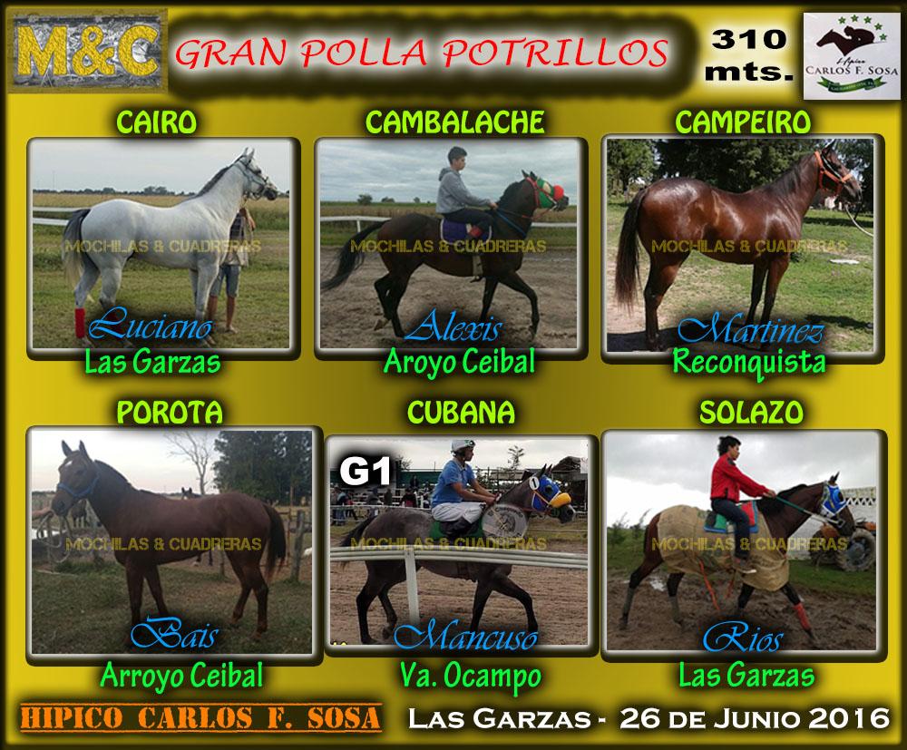 GPP - LG