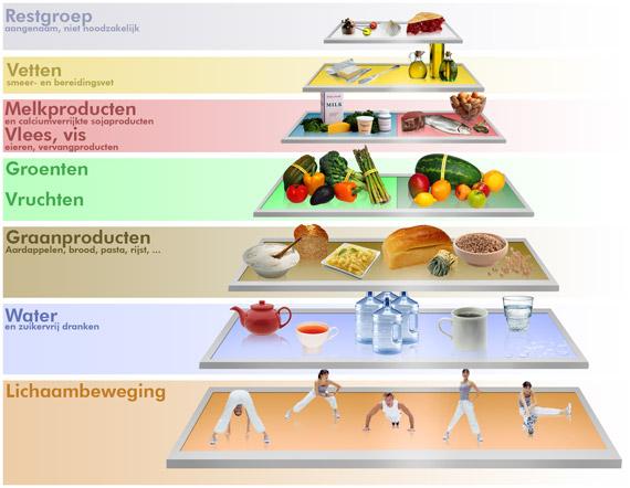 de voedingsdriehoek