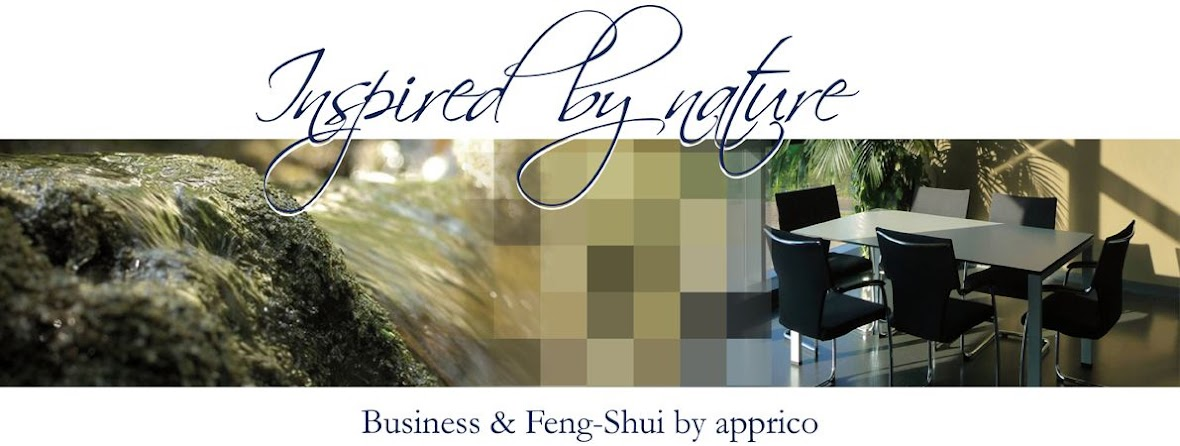 Business &amp; Feng Shui by apprico