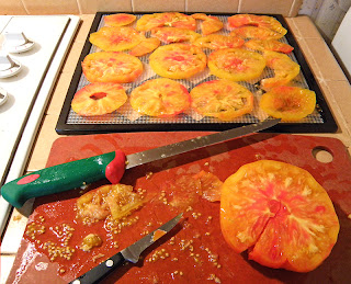 Heirloom tomatoes being sliced and laid out on dehydrator