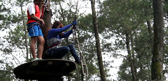 outing at TREETOP