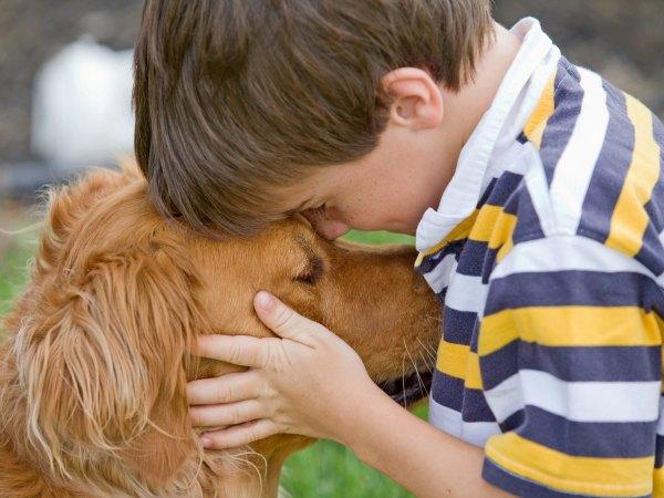 ¡Pon una mascota en la vida de tu hijo! Ganará en salud