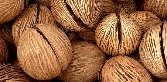 Coconut oil: A favorite recipe