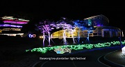 Boseong Green Tea Plantation Light Festival