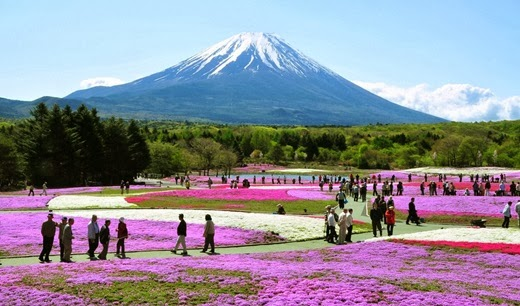 Attractions in Japan must go on. (Part 1) Mount Fuji