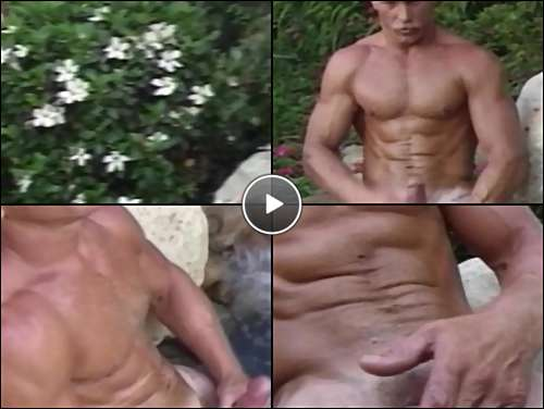 circumcised penis picture video