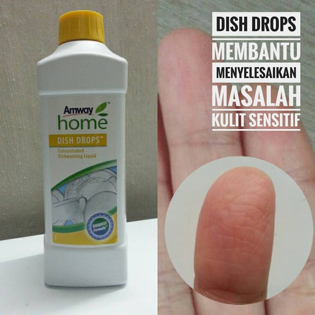 Dish Drop