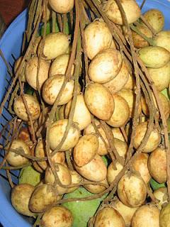 Buah rambai dan kandungan yang terdapat dalam buah rambai