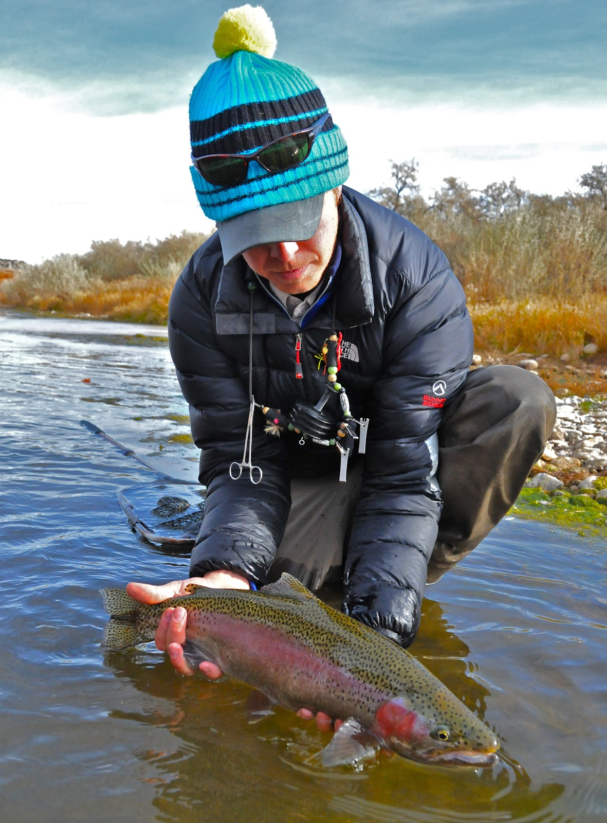 Jackson hole fly fishing report guide retreat november 1 for Fly fishing jackson hole