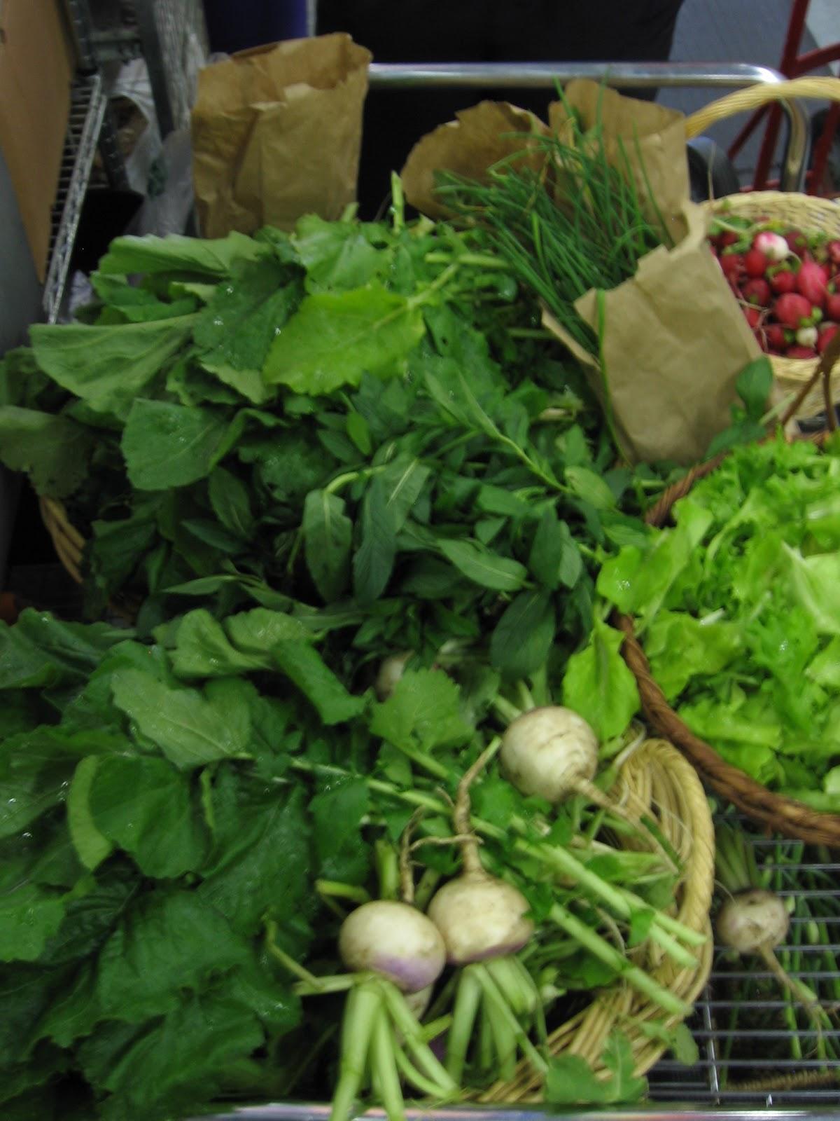 ginkgo organic gardens may 2012